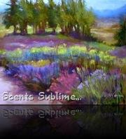 Lavender Days....