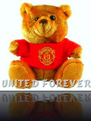 Man United Teddy Bear...