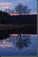 owens-pond-dawn-041114-800web