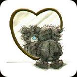 Teddy Bear scruff